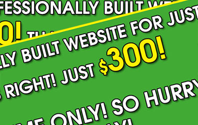 why-proffesional-website